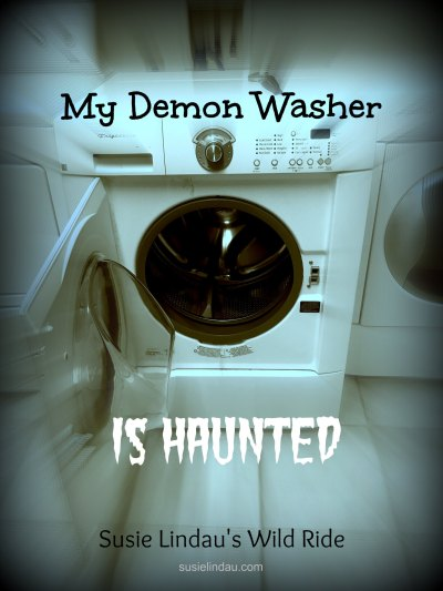 my-demon-washer-is-haunted