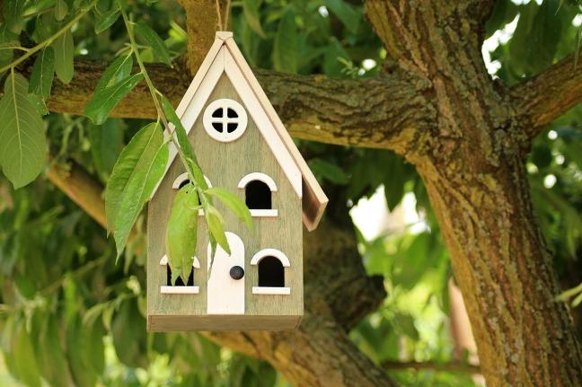 birdhouse-3395575_1280